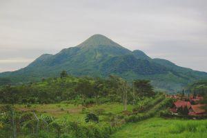 5 Rekomendasi wisata di Mojokerto yang patut dikunjungi
