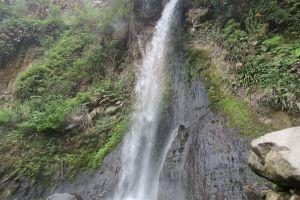 Menapaki kesejukan dan pesona alam Gunung Gede di awal musim penghujan