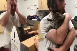 Setelah 7 tahun berpisah, pria ini bertemu kembali dengan kucingnya
