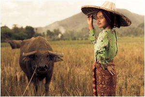 3 Negara ini ternyata punya garis keturunan dengan Indonesia