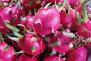 4 Macam buah-buahan ini berkhasiat mencegah sel kanker