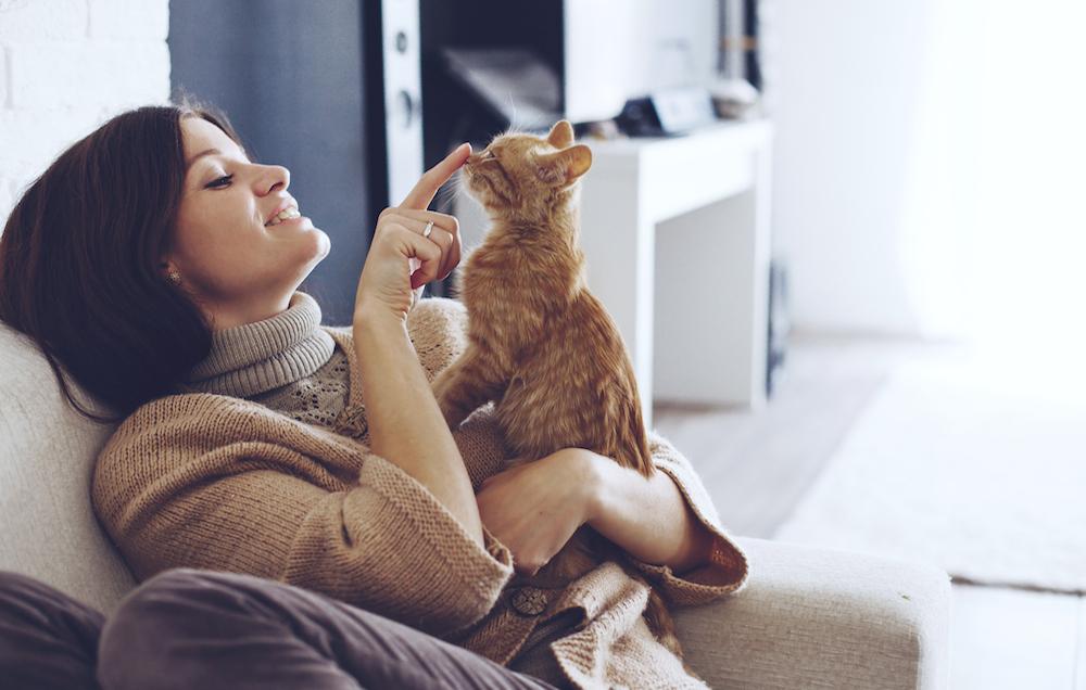 10 Perilaku kucing yang sebenarnya isyarat untuk wajib kita