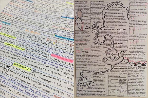 Bukan diketik, 10 tulisan indah ini asli hasil tulis tangan