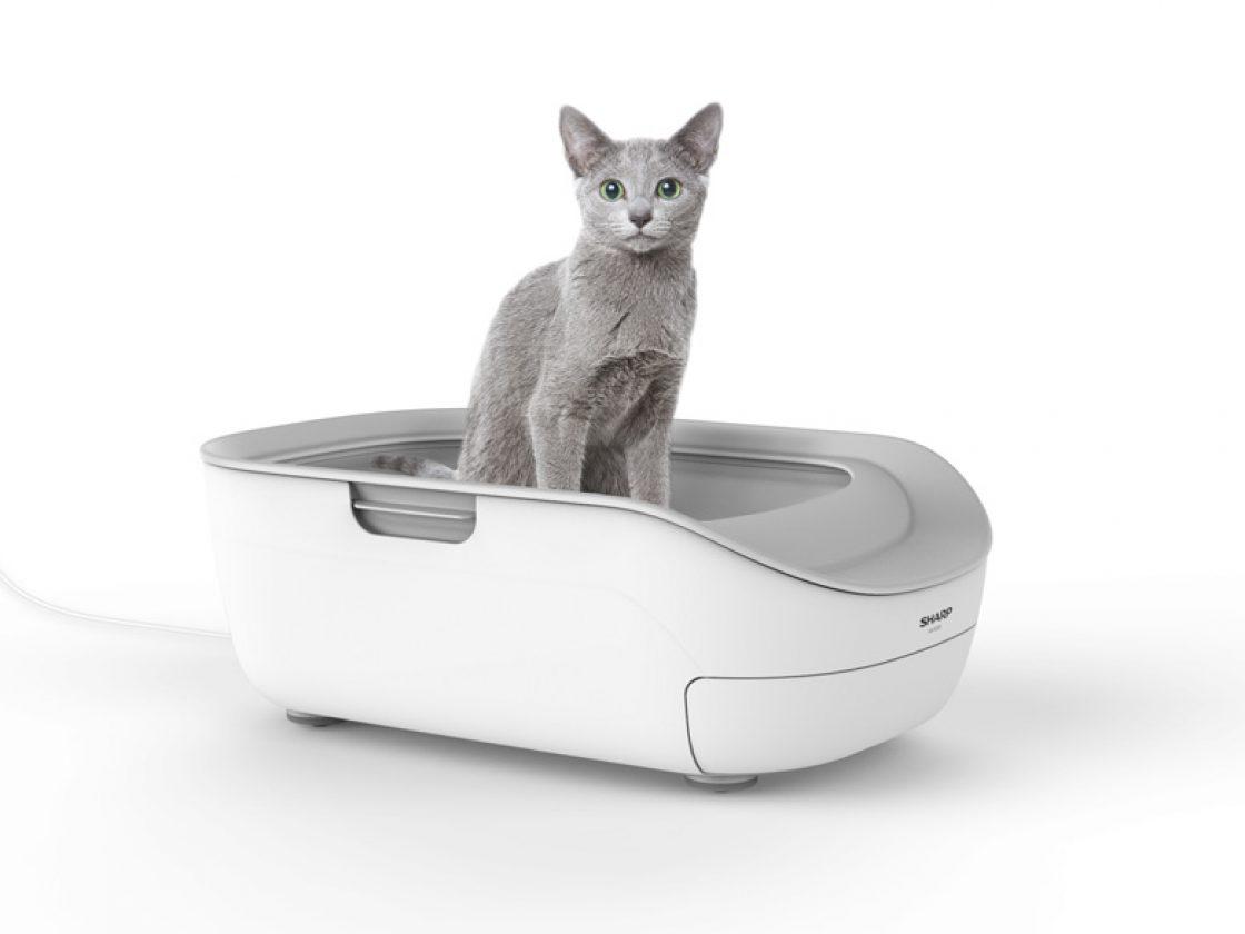 Nggak kalah dengan majikan, kucing di Jepang juga punya toilet canggih