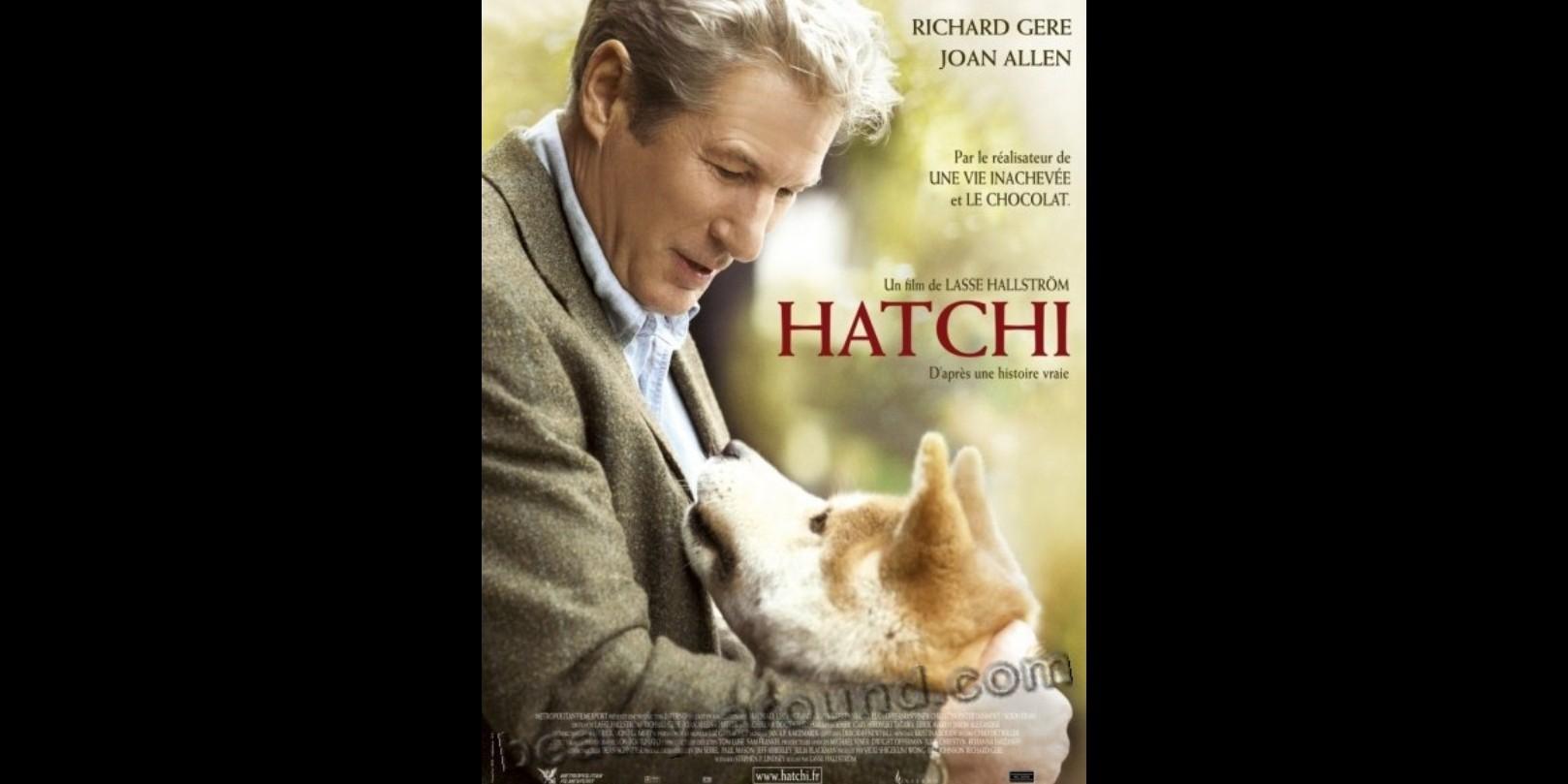 10 Film tentang anjing paling menyentuh sepanjang masa, sudah non