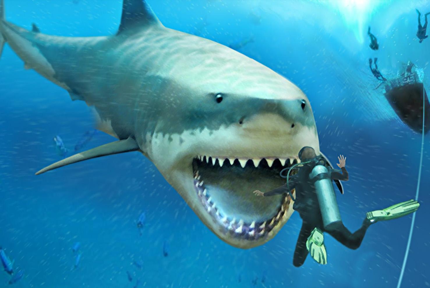 5 Fakta Megalodon, predator terbesar & kuat yang pernah hidup di Bumi