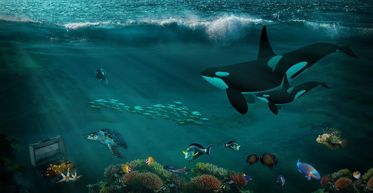Bagaimana jadinya jika lautan hanya terdiri dari air tawar?