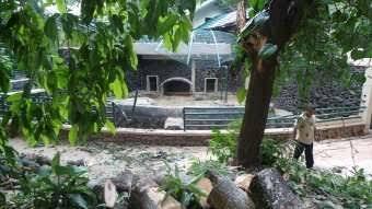 4 Kejadian parah yang menimpa kebun binatang selama 2017