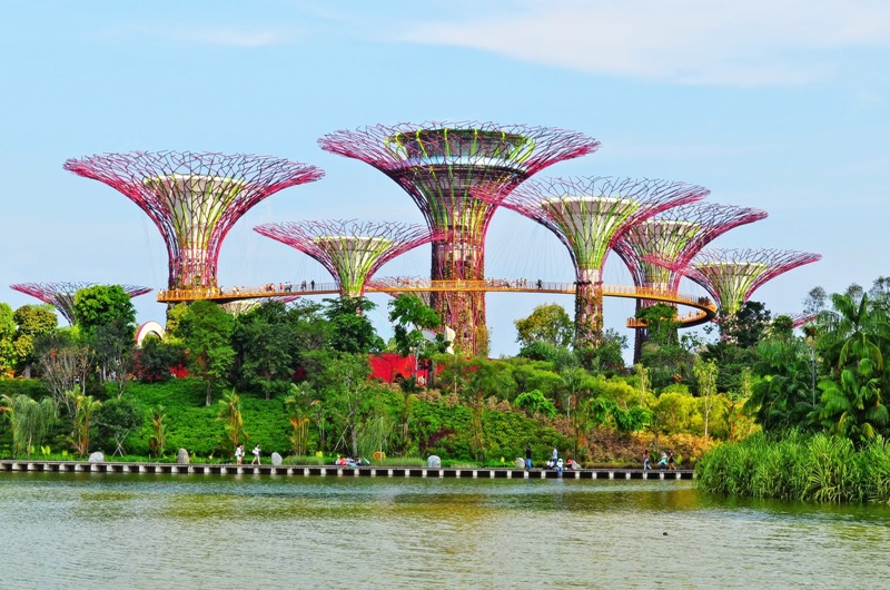 Gardens By The Bay (Sumber : hitztours.com)