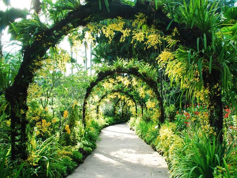 Singapore Botanic Garden (Sumber: cntraveller.com)