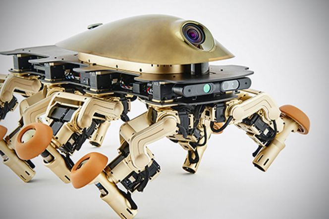 Festival robot di Austria