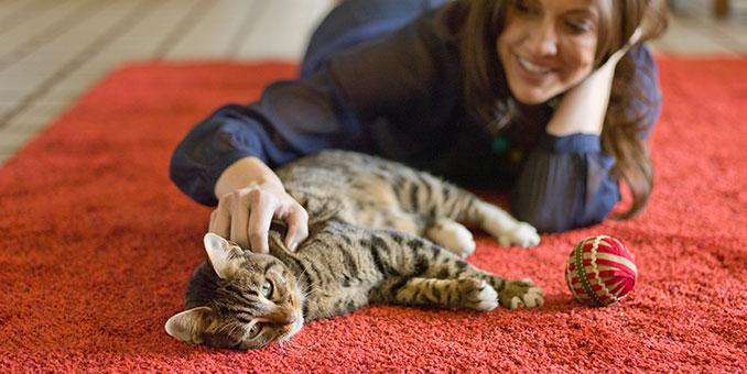 Lakukan 6 kegiatan ini setelah pulang kerja, bisa mengurangi stres