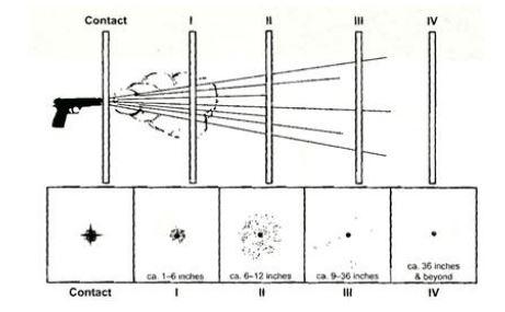 Konsentrasi dan penyebaran GSR berdasarkan jarak tembakan