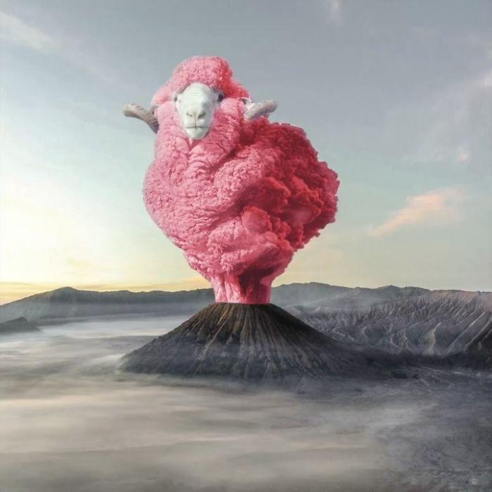 16 Gambar seni digital dengan hewan ini hasilnya seperti nyata
