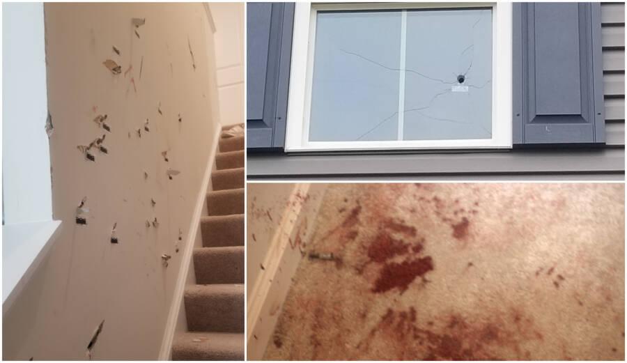 Bekas-bekas tembakan senapan api dan darah di karpet.