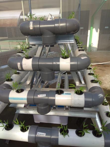 hidroponik otomatis