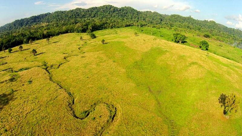 Padang Sadegan Taman Nasional Alas Purwo