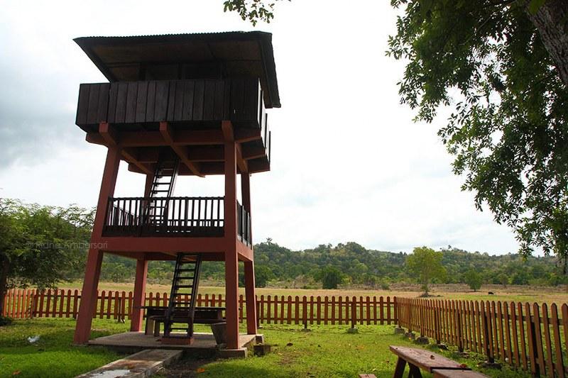 Menara pemantau satwa di padang Sadengan