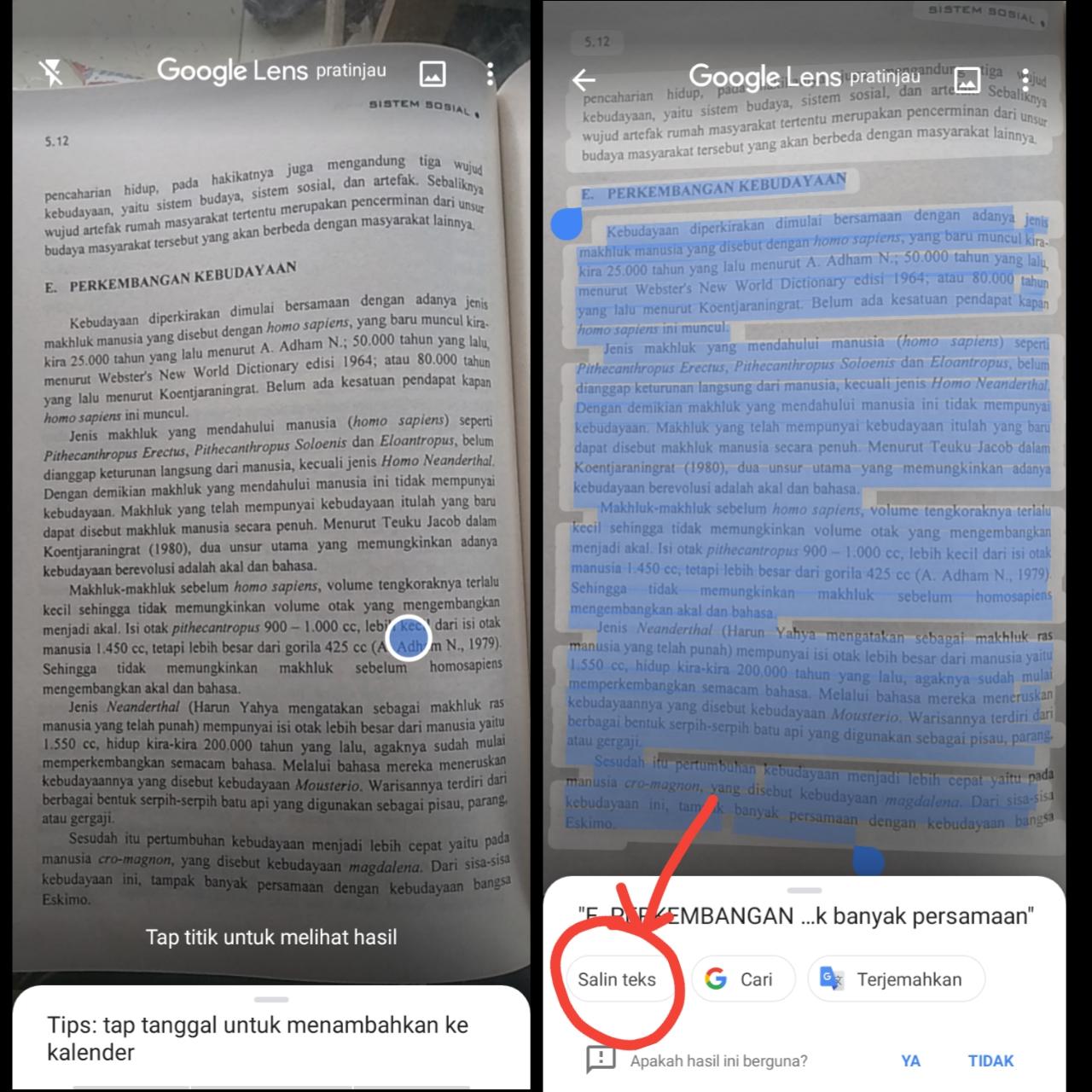Tampilan Google Lens