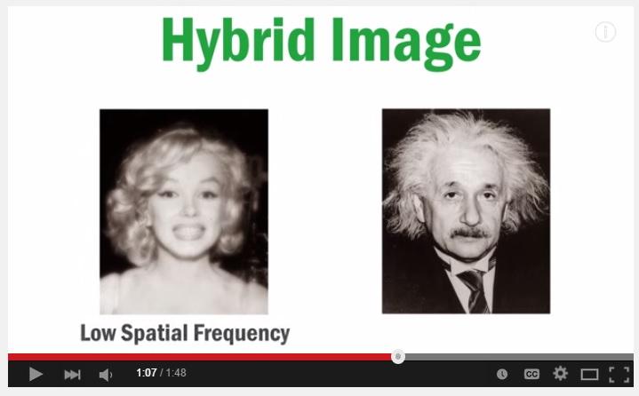 VIDEO: Cek kesehatan matamu, ini gambar Marilyn Monroe atau Einstein?