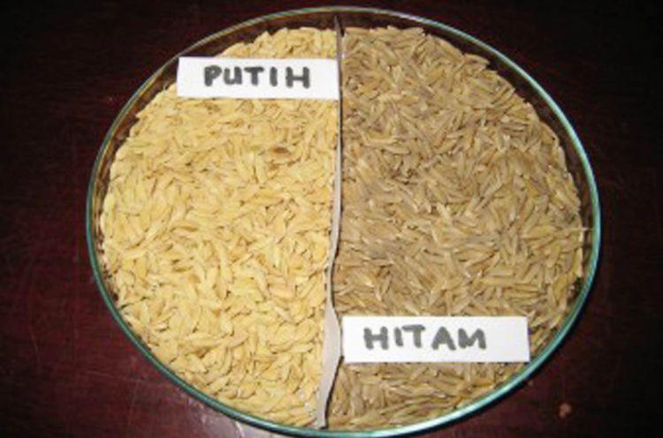 Mengenal beras hitam organik, makanan sehat yang dulunya terlarang