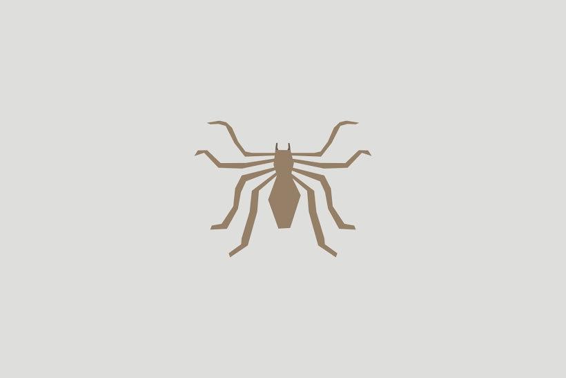 5 Fakta mengejutkan tentang laba-laba yang harus kamu tahu