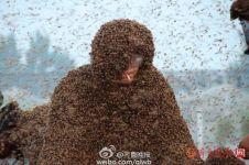 Manusia berselimut lebah