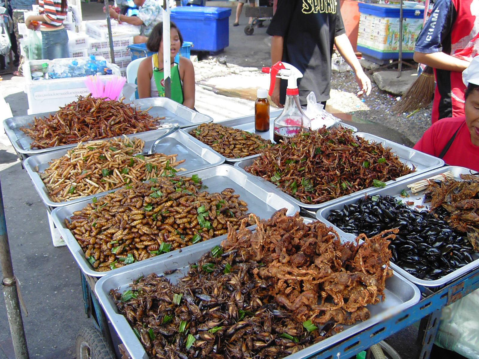 Ini alasan kamu kudu makan serangga