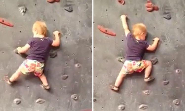 VIDEO: Balita panjat dinding layaknya profesional, top!