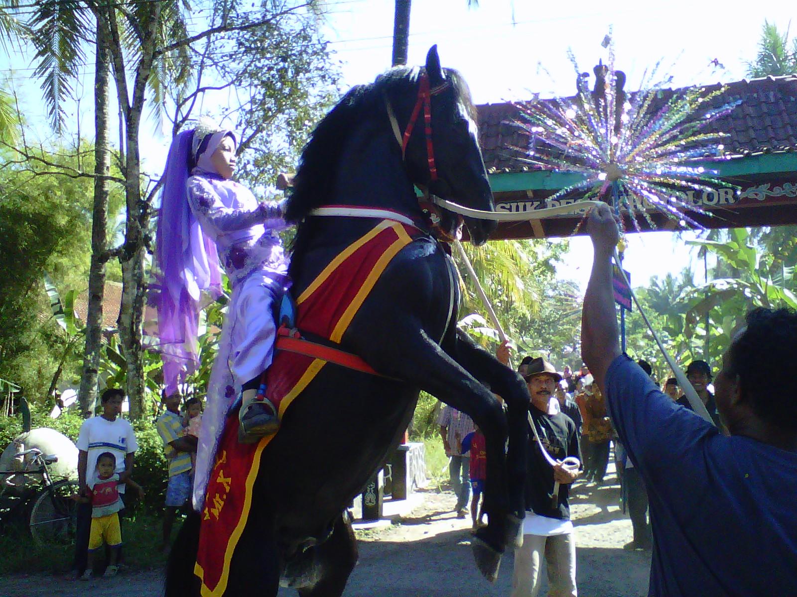 Susah-susah sedap melatih kuda 'akrobat' khas Purworejo