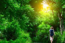 Berjalan kaki di alam terbuka bisa jernihkan pikiran dan usir stres