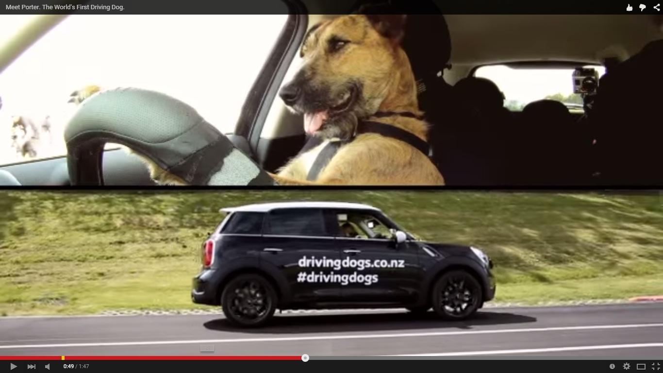 VIDEO: Kamu tak akan percaya kalau lihat siapa yang menyetir mobil ini