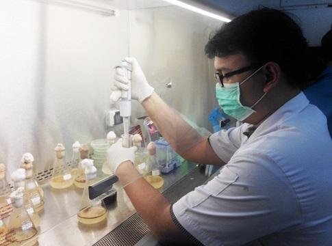 Bakteri temuan mahasiswa IPB ini ampuh atasi pencemaran minyak di laut