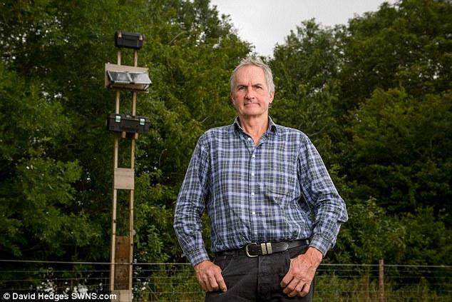 Jengah internet lemot, pria ini ciptakan koneksi berkecepatan 69 Mbps