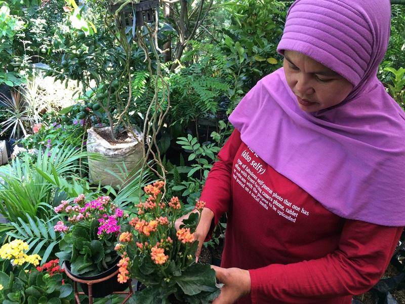 Biar tanaman hias kamu tetap cantik, perhatikan 5 hal ini