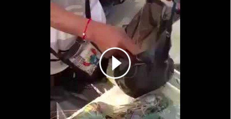 Video ini tunjukkan pentingnya cermat hadapi pedagang curang
