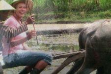 Jauh-jauh dari Eropa, bule belajar membajak sawah di kampung ini