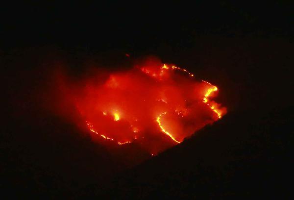 Hutan di Gunung Sindoro terbakar hebat
