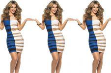 Inilah jawaban perdebatan gaun kontroversial 'biru-hitam'