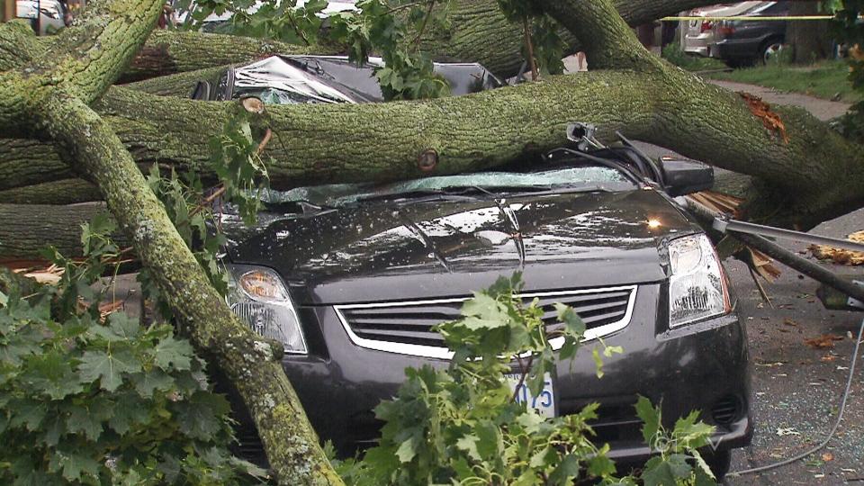 Kendaraan-kendaraan ini terperangkap dalam sisa bencana