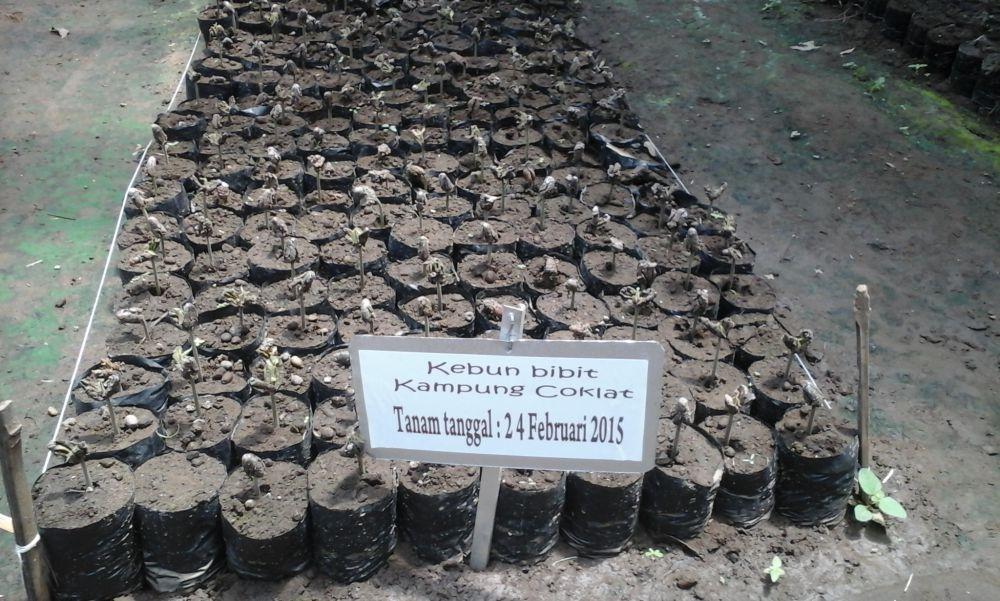 Sepuluh bulan berbisnis cokelat, omzetnya mencapai Rp 60 juta/hari