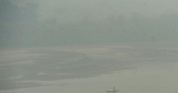 Giliran warga dan netizen Timika protes bencana asap