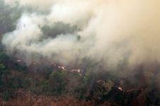 Prihatin asap masyarakat bikin petisi, cabut izin pembukaan lahan baru