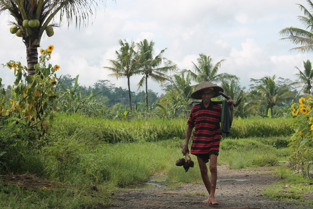 10 Hal menarik saat berlibur di desa, kamu tidak dapat menemui di kota