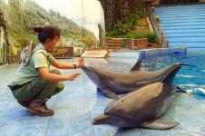 Ticta, dokter hewan cantik yang dedikasikan hidupnya untuk satwa liar