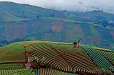 Pemandangan indah ini pasti kamu pikir ada di Bali, padahal bukan!