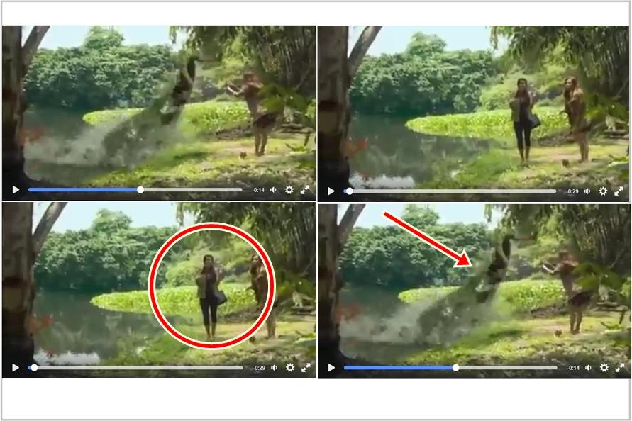 Seorang gadis diterkam buaya saat selfie di pinggir sungai