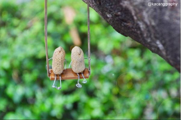 Kacang tanah bisa dikreasi jadi karya seni keren, berikut buktinya!