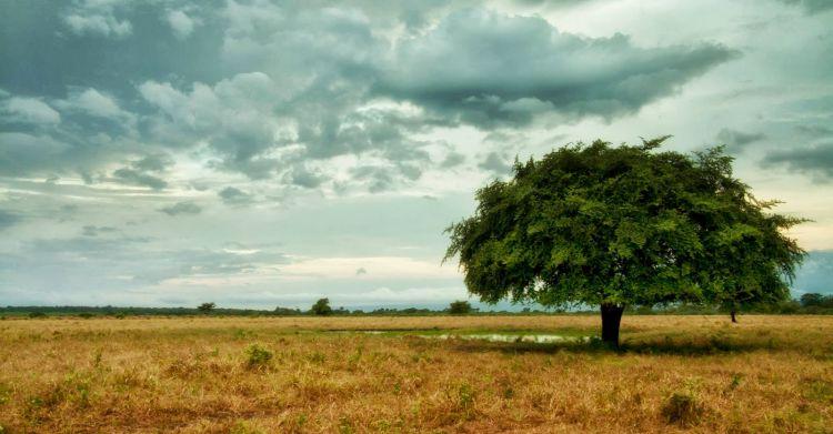 10 Destinasi Wisata Ini Bukti Jika Banyuwangi Surga Kecil