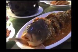 Cara masak ikan di restoran ini bikin banyak orang murka, kenapa ya?